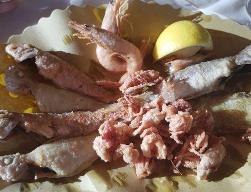 Fattoria del Pescatore Castiglione Della Pescaia
